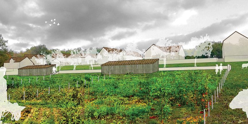 Perspective jardins partages